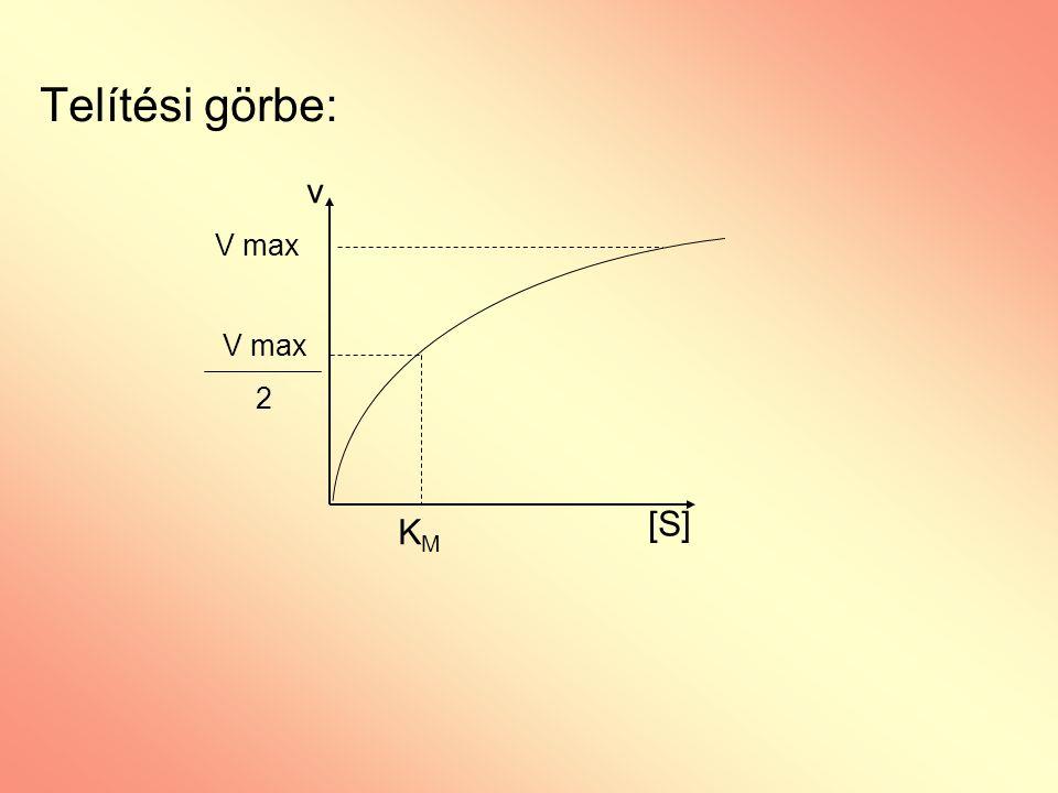 Telítési görbe: v V max V max 2 [S] KM